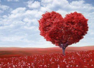 Những stt và câu nói hay về tình yêu Nam Nữ