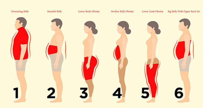 Biết được giảm mỡ, nơi tích mỡ - bạn sẽ giảm được mỡ