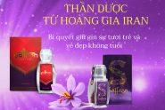 Nhụy Hoa Nghệ Tây Saffron: tác dụng và cách uống